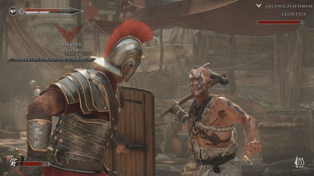 Ryse: Son of Rome erhielt den Animago Award 2014 für »Bestes Game-Design«.