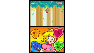 Super Princess Peach_DS 5